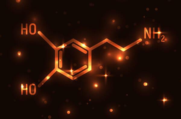 A dopamina é um neurotransmissor que faz parte da família das catecolaminas.