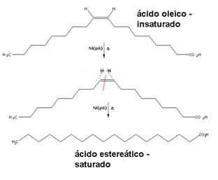 Hidrogena��o