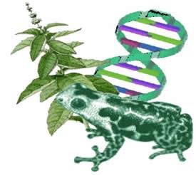 História da biologia, como tudo começou