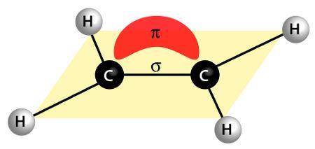 Ligação sigma e pi representadas em uma molécula orgânica