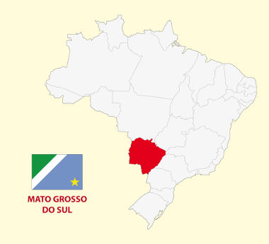 Localização e bandeira do Mato Grosso do Sul