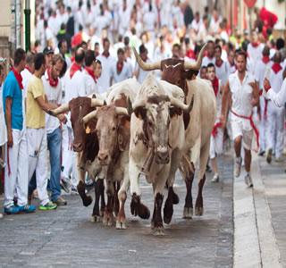 Momento em que os touros percorrem as ruas de Pamplona, no conhecido encierro.*