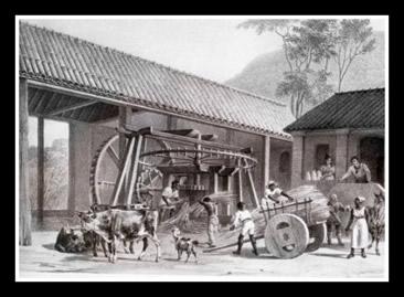 Nos engenhos coloniais eram exercidas formas de trabalho assalariadas