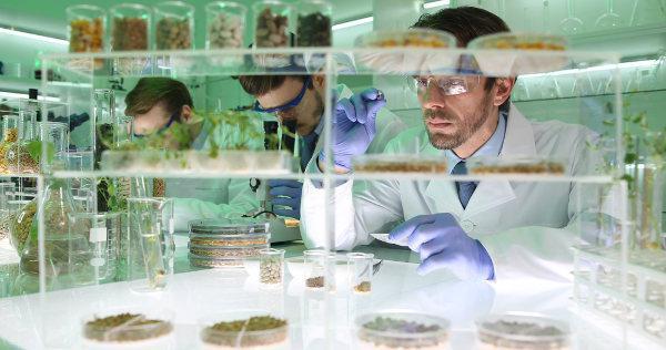 O biólogo é o profissional responsável pelo estudo da vida.