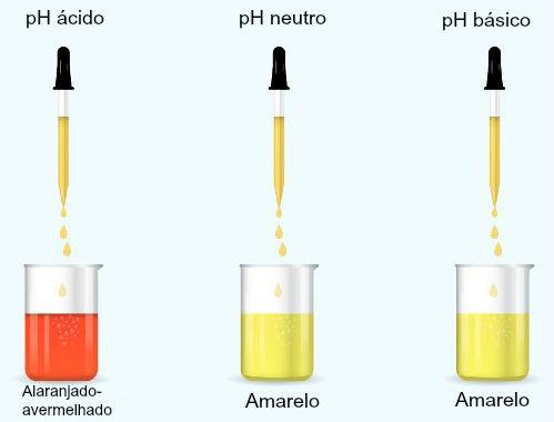 O indicador alaranjado de metila pode ser utilizado em uma neutralização