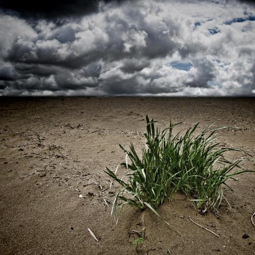 O processo de lixiviação do solo é intensificado pela ação humana e pode levar o solo à total infertilidade