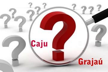 """O uso ou não do acento gráfico na letra """"u"""" depende das regras de acentuação"""