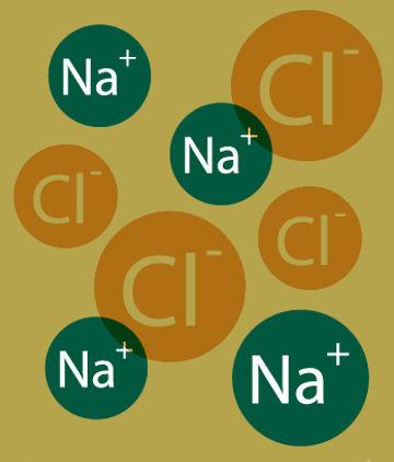 Íons provenientes da dissociação do cloreto de sódio