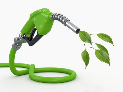 Os biocombustíveis apresentam-se como a grande alternativa energética da atualidade