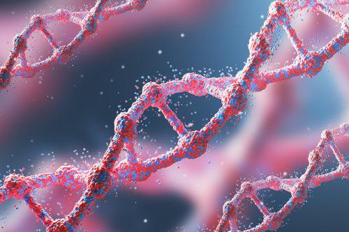 Os genes também podem expressar-se em codominância, não apenas em dominância e recessividade