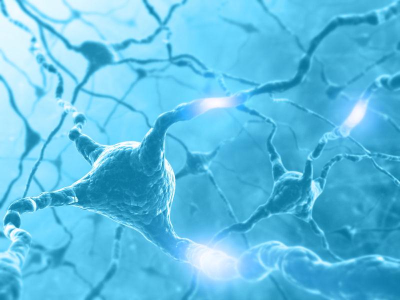 Os neurônios são responsáveis pela propagação do impulso nervoso