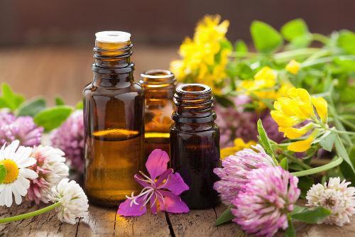Os óleos essenciais são os produtos obtidos por meio da destilação por arraste de vapor