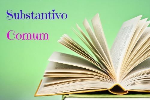 Os substantivos comuns nomeiam seres animados e inanimados sem individualizá-los