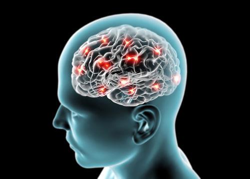 Quando ocorre morte encefálica, há ausência de atividade elétrica cerebral