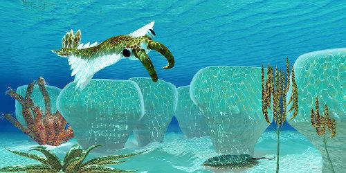 Representação de um <p><em>Anomalocaris</em></p> preparando-se para atacar um trilobita