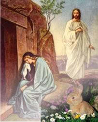 Ressurreição de Cristo e o coelho, que simboliza vida em abundância