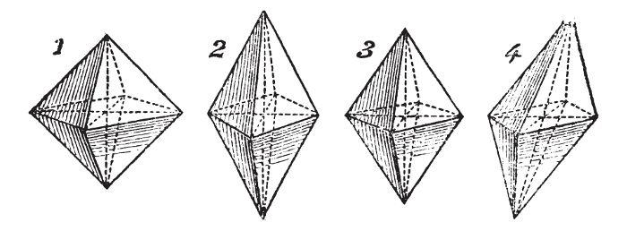 Sólidos que podem ser construídos em papel na sugestão de atividade que propomos