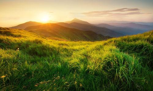 Vegetação, minerais e o ar são exemplos de matérias presentes na natureza