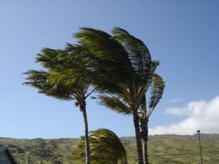 Os ventos são de grande importância para a dinâmica terrestre