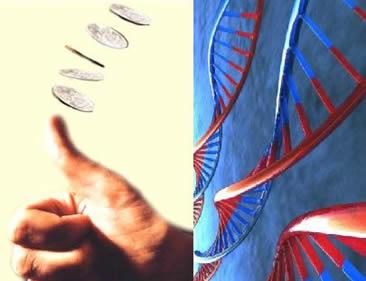 Probabilidade genotípica e fenotípica