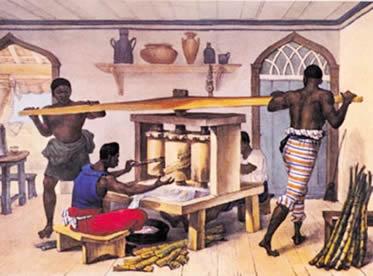 A empresa açucareira representou o modelo colonial exploratório no Brasil