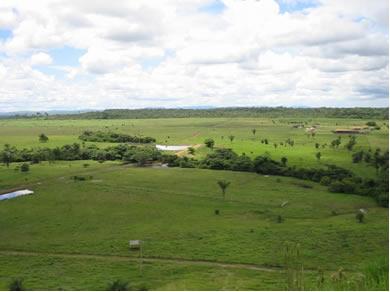 Atualmente utilizamos o hectare na medição de áreas rurais
