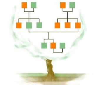 Explicação sobre genetica