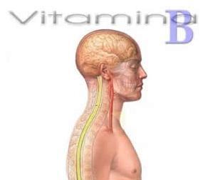 Um conjunto de vitaminas hidrossolúveis