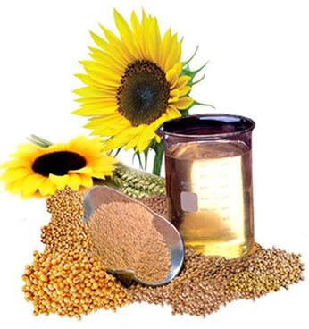 Matérias-primas utilizadas na produção de biodiesel