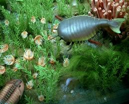 Provável aparência de um ecossistema marinho do Período Cambriano