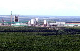 Indústria no sul da Bahia