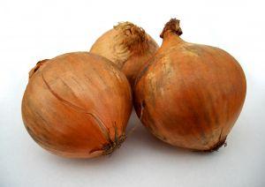A cebola é originária da Ásia