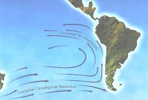 O trajeto da corrente de Humboldt