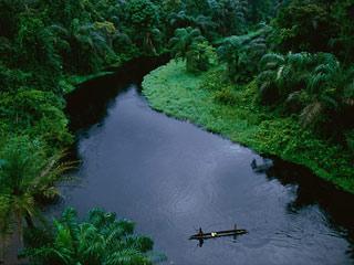 A floresta do Congo fornece umidade para a atmosfera