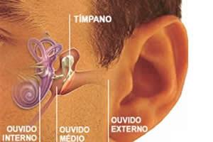 Estruturas responsáveis pela audição