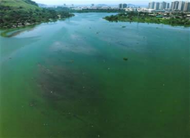 Ambiente aquático eutrofizado