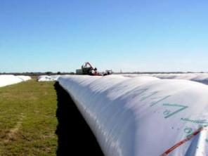Sistema de armazenamento de grãos na Argentina