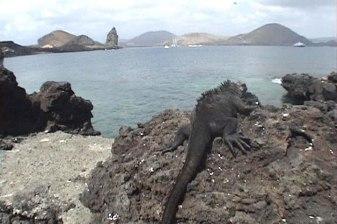 Aspecto de uma das ilhas do arquipélago