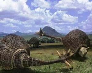 magem do gliptodonte, animal de tamanho e formato semelhantes ao fusca!