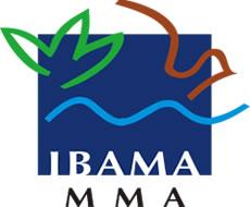 IBAMA – A importância de se pensar no futuro