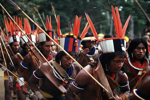 As riquezas existentes em território indígena, fez com que muitos fossem dizimados e expropriados de seu território