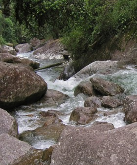 O riacho é um exemplo de águas continentais