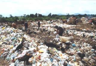 A deposição de lixo no meio ambiente*