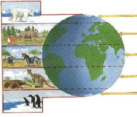 Os climas conforme os trópicos