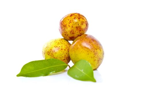 A mangaba é muito rica em ferro e vitamina C