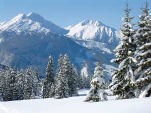 Área coberta de neve