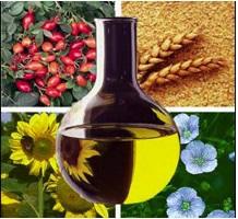 O óleo vegetal também pode ser utilizado como combustível
