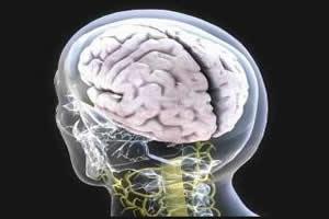 Doenças psicossomáticas tem sua principal origem no sistema nervoso