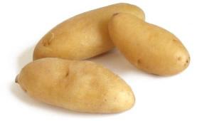 A batata é originária do Peru