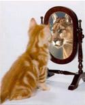 Ser exemplo para outras pessoas é mostrar que se pode mudar